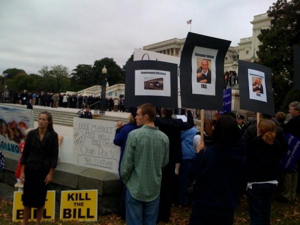 pelosi protest.